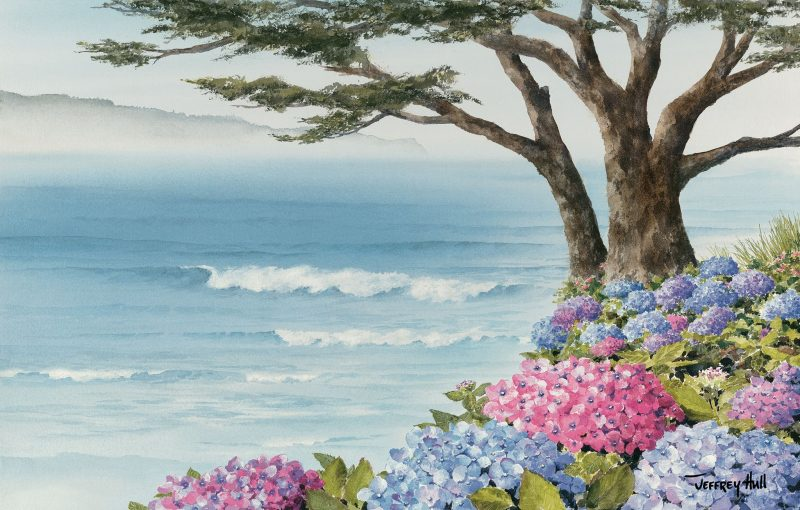 Coastal Hydrangeas