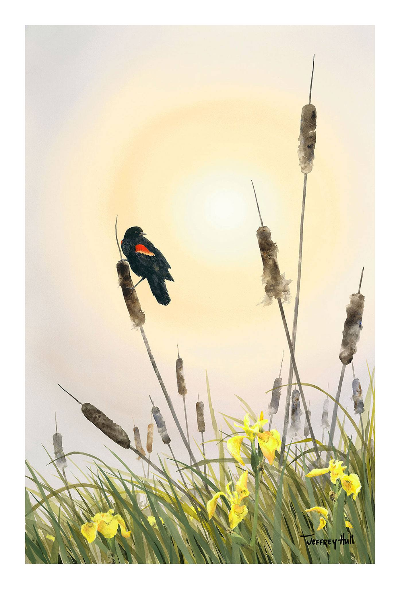 Red-Wing-_-Cattails-OpenEd-Unframed-4-Website-2021